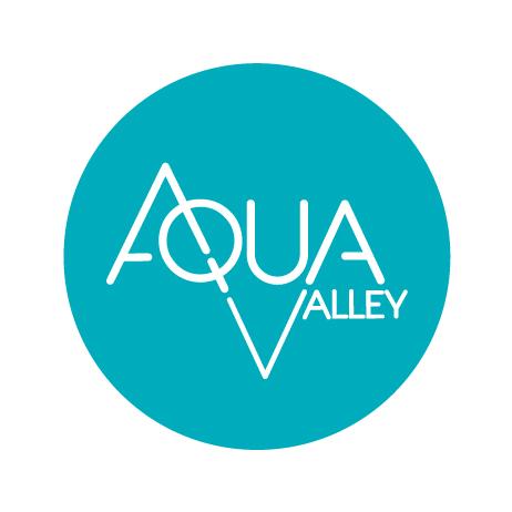 04.07.2019 – Juvignac – Journée stratégique Aqua-Valley