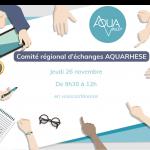 26/11/2020 – COMITÉ RÉGIONAL D'ÉCHANGES – WEBINAIRE